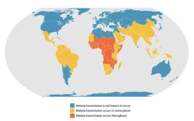 COVID-19 besmettingen en doden in landen met malaria extreem laag