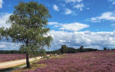 Testimonial van een echtpaar (40-ers) uit Drenthe